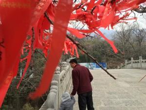 花果山风景