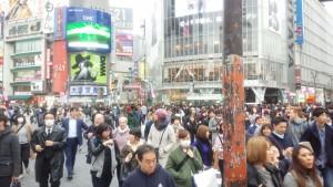 经常很多人过的一条马路,很多人都在拍照