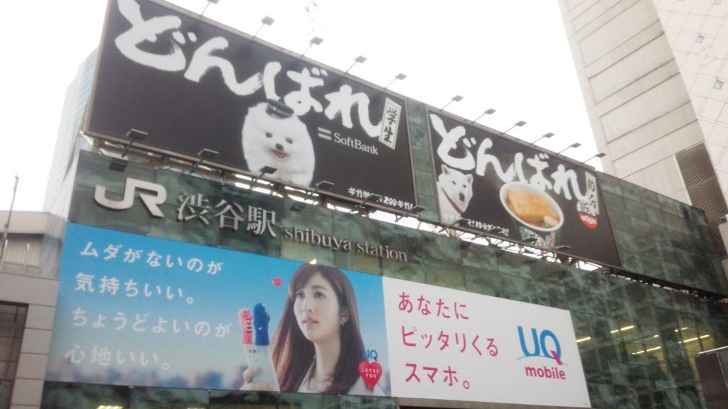 摄于JR涉谷站前,软银和日清的合作广告