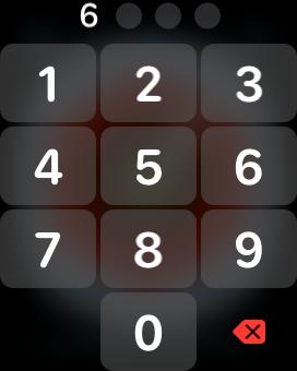 密码输入界面