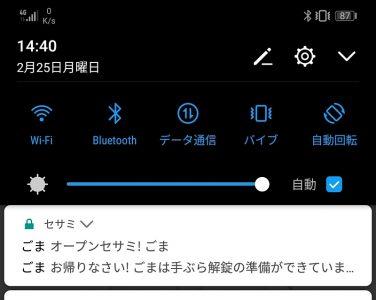 Android提示,虽然会想名字会不会太单纯,但想到很像某阿拉丁角色迎接你回家就觉得很治愈。