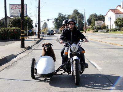 双人摩托车(Sidecar)